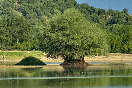 kerkini: Kerkini lake eco-area at nord Greece by Struma river