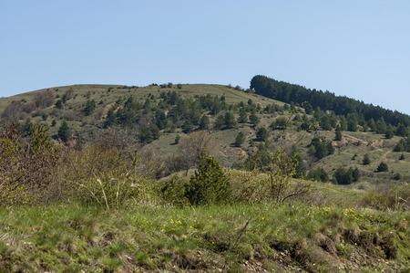 glades: Balkan mountain at spring Stock Photo