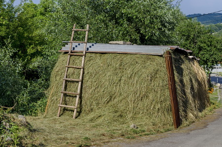 Covered haystack and wood step-ladder in Jeleznitsa village, near Sofia