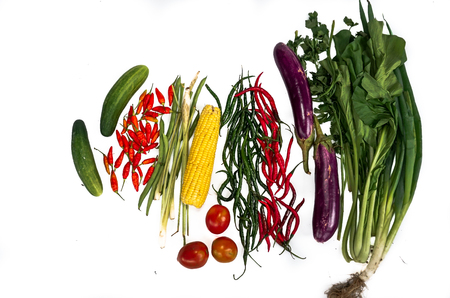 Fresh vegetables with white background. Chili, corn, eggplant, mustard greens, carrots, tomatoes, cucumbers Reklamní fotografie