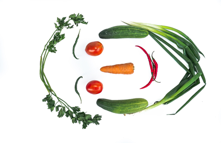 Fresh vegetables in the form of faces with a white background. Chili, eggplant, carrots, tomatoes, cucumber Reklamní fotografie
