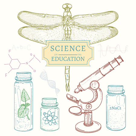 science education: Education and science: biology, chemistry, physics retro sketch hand drawn vector illustration