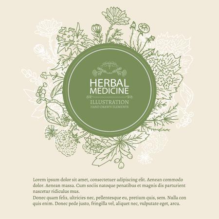 Herbal medicine hand drawn elements vintage tempate sketch vector illustration
