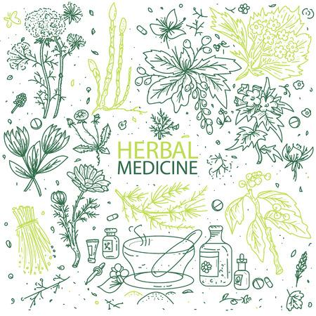 Alternative éléments tirés des herbes de médecine doodle main esquisse illustration vectorielle