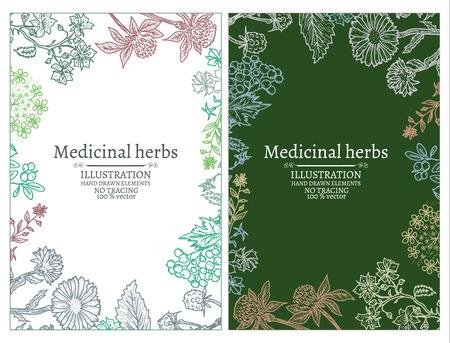 calendula: Herbs banners hand drawn vintage sketch vector illustration Illustration