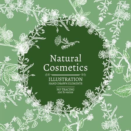 natural cosmetics: Natural cosmetics with herbs and flowers hand drawn vintage sketch vector illustration