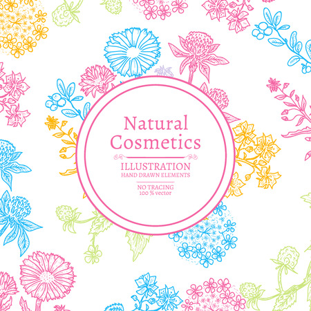 natural cosmetics: Natural cosmetics herbs and flowers hand drawn vintage sketch vector illustration