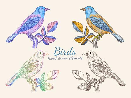 Colección pájaros de la vendimia