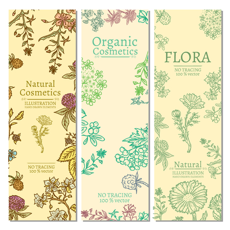 Herbs and flowers template banner hand drawn vintage sketch vector illustration