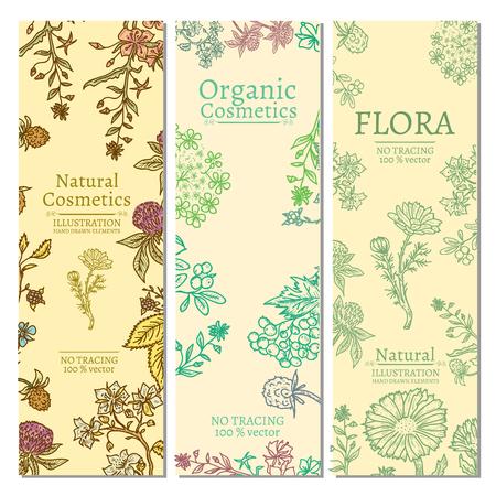 Kruiden en bloemen template banner hand getekend vintage schets vector illustratie