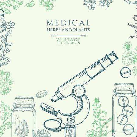 ejemplo del vector dibujado a mano medicina herbal Ilustración de vector