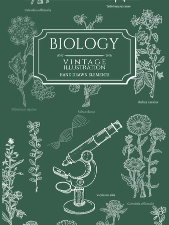 Biology book covers template vintage hand drawn vector illustration Vettoriali