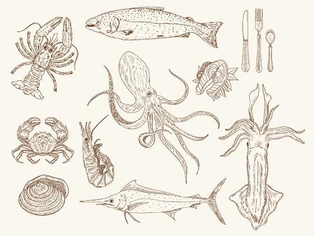 魚介類コレクション手描きスケッチ ビンテージ ベクトル図