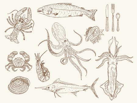 Seafood collection hand drawn vintage sketch vector illustration
