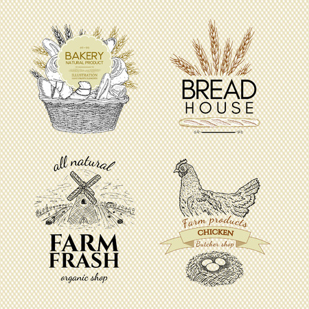 french produce: Food set design template bakery products butcher shop farm chicken eggs vector Illustration