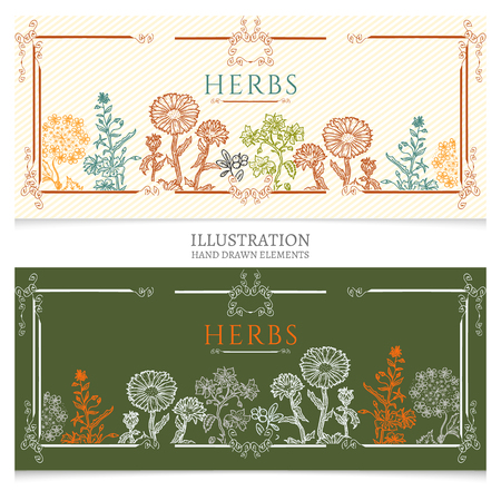 natural cosmetics: Medical herbs banners natural cosmetics on plants
