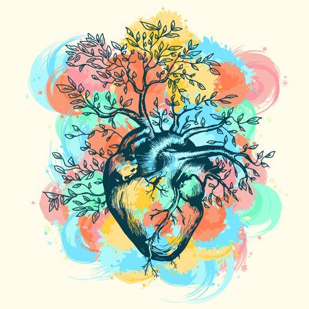 Anatomico cuore umano da cui l'albero cresce spruzzi di illustrazione vettoriale acquerello