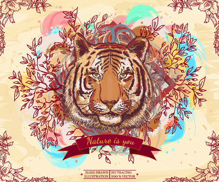 Tiger portrait wild nature live nature vintage animal art print hand drawn vector illustration