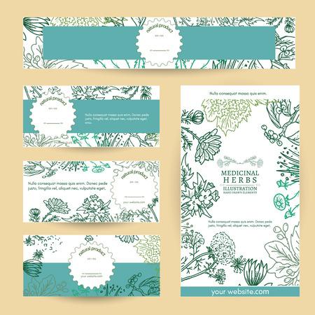Cosmetici a base di erbe medicinali a base di erbe naturali illustrazione template vettoriale Archivio Fotografico - 59649782