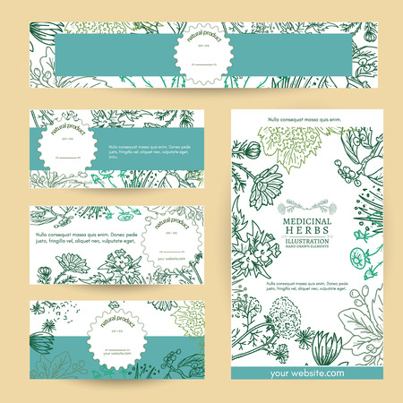 calendula flower: Herbal medicine cosmetics based on natural herbs template vector illustration