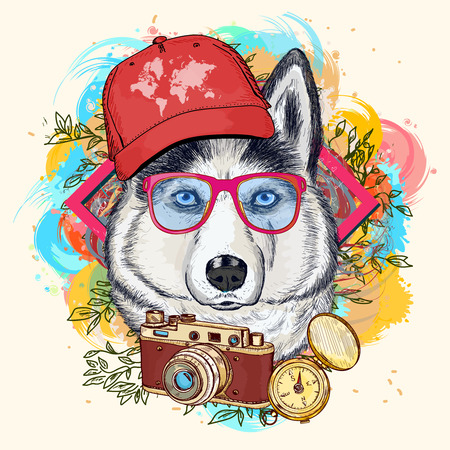 Hipster Husky art print illustration main traction animale Banque d'images - 59648866