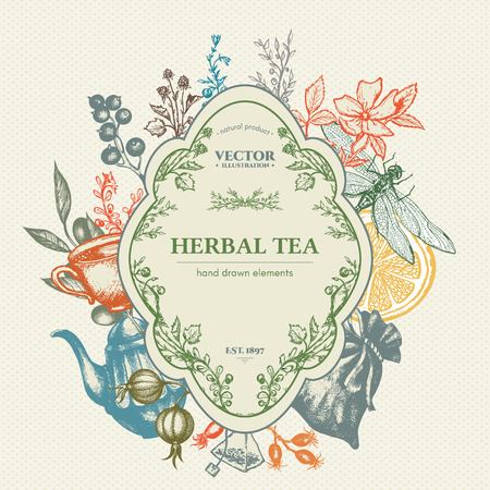 Herbal tea herbs and flowers botanical decorative vintage background hand drawn ink vector Illustration