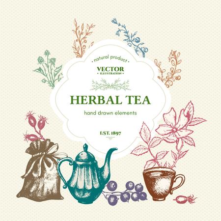 herbal tea: Herbal tea vintage template hand drawn ink vector
