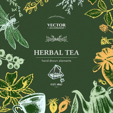 herbal tea: Herbal tea vector card ink hand drawn vector illustration