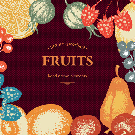 inking: Vintage card design with vector inking fruits and berries sketch cherries peaches pears currants gooseberries Healthy food retro frame for menu