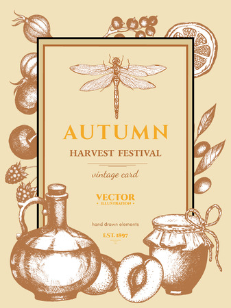 harvest festival: Autumn harvest festival vintage poster harvest hand drawn ink engraving style vector