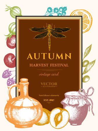 harvest festival: Autumn harvest festival vintage poster hand drawn engraving style vector