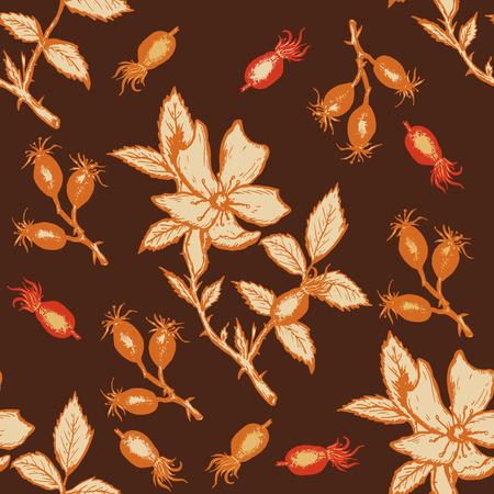wild rose: Wild rose seamless pattern hand drawn vector Illustration