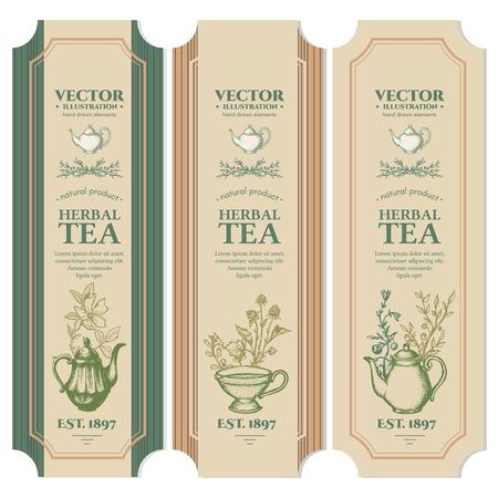 Labels Herbal tea design ink hand drawn vector