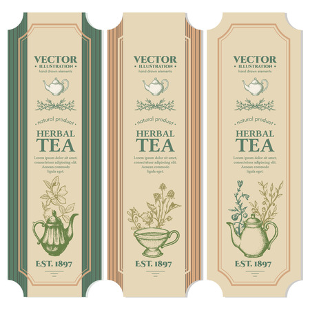 Labels Herbal tea design ink hand drawn vector