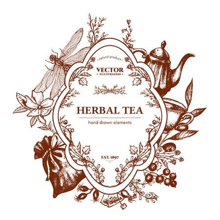 chamomile tea: Herbal tea herbs and flowers botanical vintage herbs tea background hand drawn ink vector