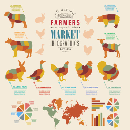 Farm infographics farm animals chickens, cows, sheep, goats, geese, turkeys design elements of livestock vector illustration Illustration