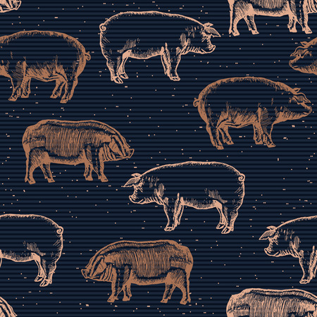 pigsty: Pigs seamless pattern pig farm background hand drawn vector