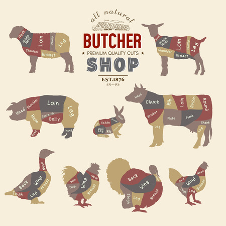 Butcher shop. Farm animals silhouette. Cow, rabbit, sheep, pig, goat, goose, duck, turkey, diagrams meat vector illustration Vettoriali