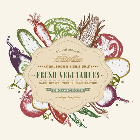 Vegetables vector card design with ink hand drawn. Vintage healthy eating illustration