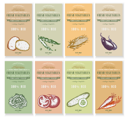 packets: Vegetable seeds packets template. Vector hand drawn ink sketch vegetable banners set. Eco vintage foods.