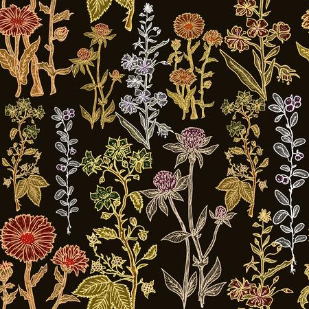 herbal medicine: Seamless vintage herbal pattern with ink hand drawn medicinal herbs and plants sketch. Herbal medicine vector background.
