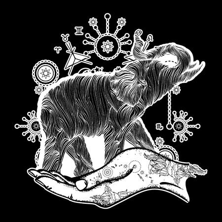 sacral: Elephant in the hands tattoo art. Elephant sacral style t-shirt design. Symbol of meditation, tourism, hipster. Elephant line art tattoo