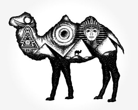 Camel tattoo art Illustration