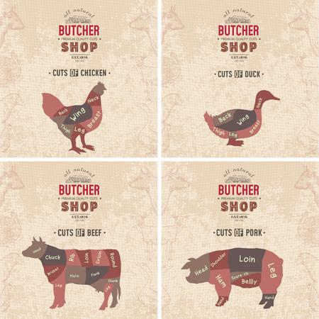 Cuts of beef, pork, chicken, duck. Butcher shop retro poster scheme and diagram - beef, pork, chicken, duck. Vintage hand drawn vector Illustration Stok Fotoğraf - 87222889