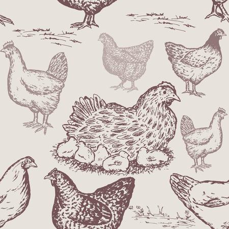Patrón de animales de granja. Mano dibujada granja de gallina de patrones sin fisuras en estilo vintage, productos de granja de embalaje pollo huevos dibujados a mano vector Foto de archivo - 87222896