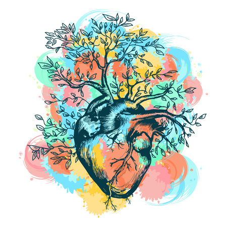 Coeur humain anatomique à partir de laquelle l'arbre se développe les éclaboussures de l'illustration vectorielle aquarelle