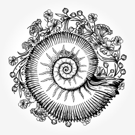 Ammonites et tatouage de fleurs art nouveau. Symbole de la science, de la paléontologie, de l'histoire, de la biologie, du rapport d'or. Conception antique de t-shirt de mollusque Banque d'images - 87711816