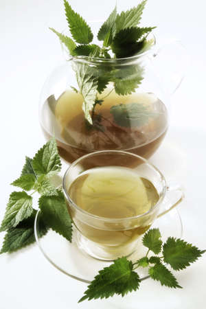 Brennesseltee stinging nettle tea Stock Photo - 23583677