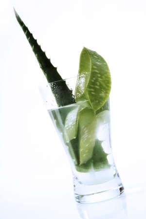 aloe barbadensis: Aloe Vera juice LANG_EVOIMAGES