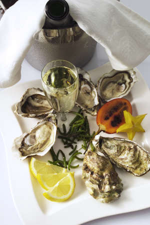 fresh oysters LANG_EVOIMAGES